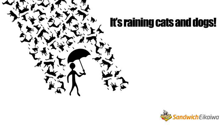 Raining cats and dogs 意味