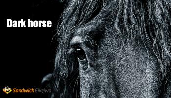 Dark horse  競馬用語が由来のイディオム