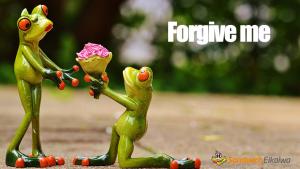 「forgive」と「allow」意味の違いと使い分けの仕方