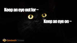 第104回 Keep an eye on の意味と例文 その他の似た表現